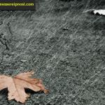 Sognare la pioggia che significa? (SIGNIFICATO DEI SOGNI)